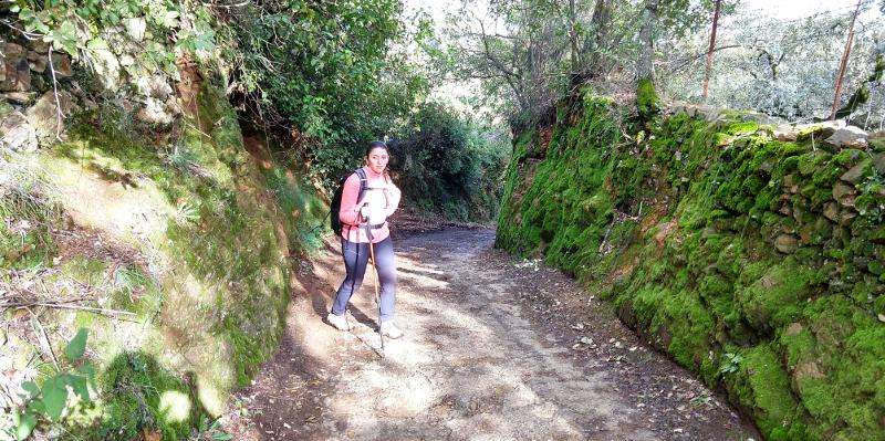 Sendero Aracena - Linares de la Sierra