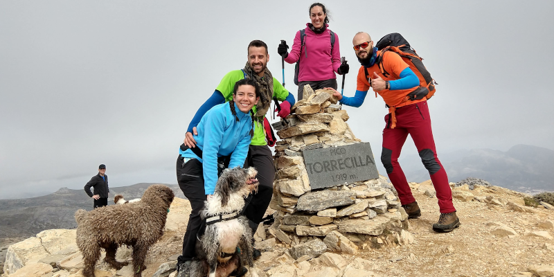 El equipo de hoy en la cima del Pico Torrecilla