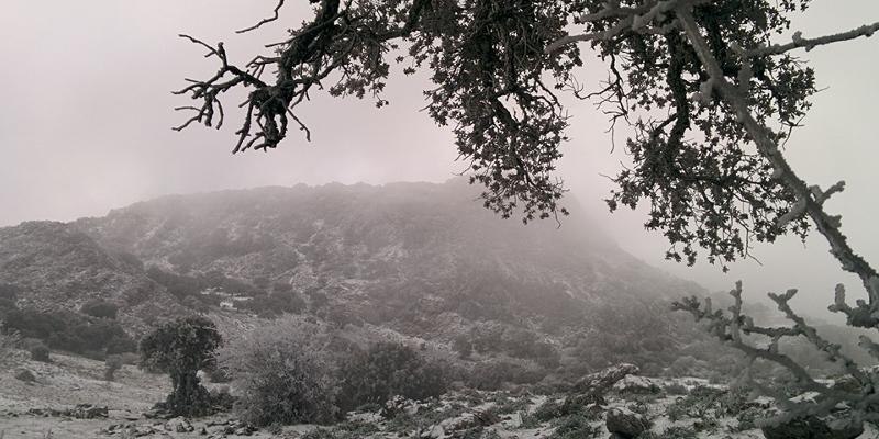 Vistas a la sierra de Grazalema